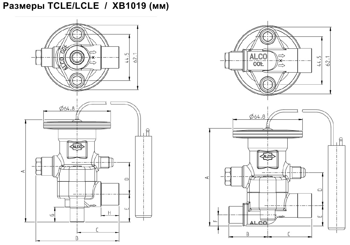 TCLE  LCLE Sizes